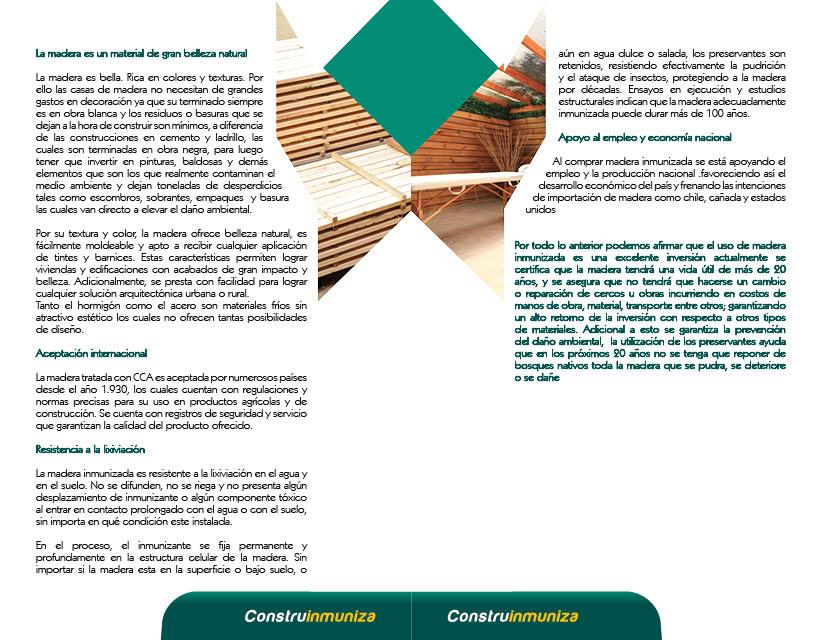 Cartilla Construinmuniza previa 29