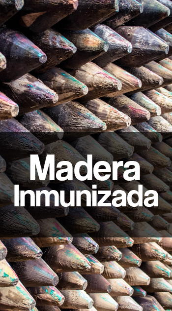 MaderaInmunizada1